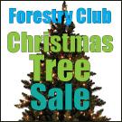 Tree-Sale-display