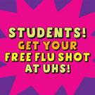 Flu_2013_webadbutton