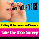 NSSE-WEB