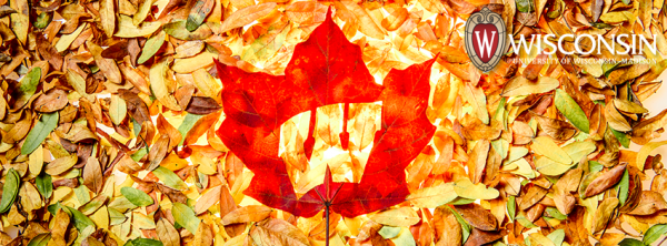 FBC_W_Autumn_leaves15_4572