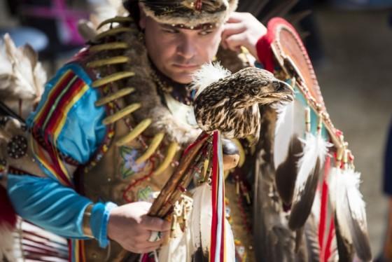 Powwow-2014-large-775x517