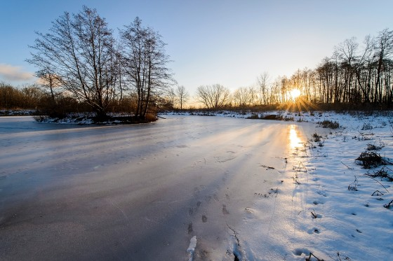 With winter temperatures in the single digits, the sun rises over the frozen Duck Pond inside the UW Arboretum at the University of Wisconsin-Madison on Jan. 4, 2017. (Photo by Bryce Richter / UW-Madison)